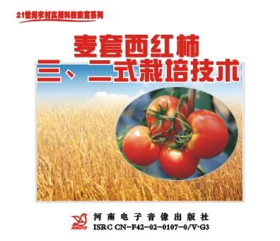 麦套西红柿三.二式栽培技术