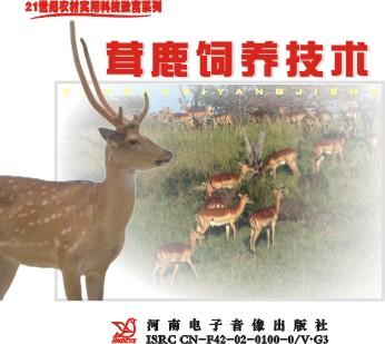 养鹿收茸技术